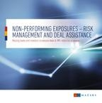 Non-performing exposures - risk management and deal assistance